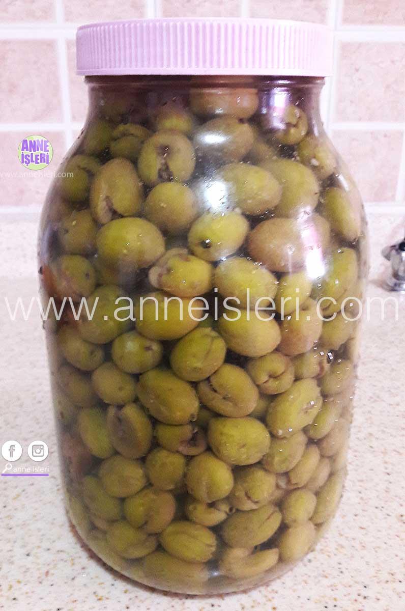 Zeytinyağı nasıl yapılır ile Etiketlenen Konular 90