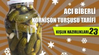 acili-kornison-tursusu