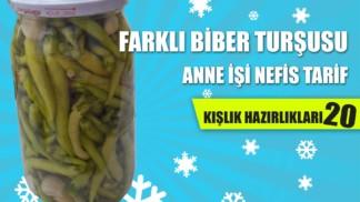 farkli-biber-tursusu-tarifi