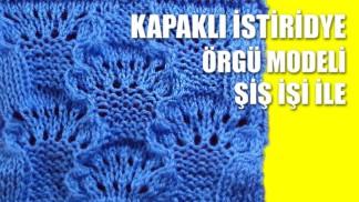 kapakli-istiridye-orgu-modeli