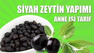 siyah-zeytin-yapimi