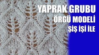 yaprak-grubu-orgu-modeli