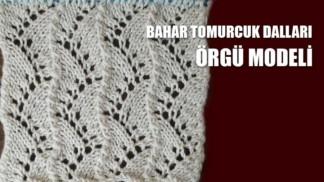 bahar-tomurcuklari-orgu-modeli