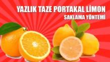 portakal-limon-saklama-yontemi